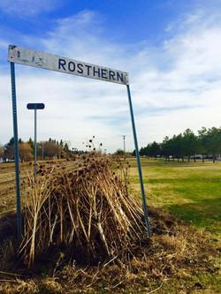 Rostern, SASKATCHEWAN