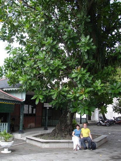 Yogyakarta, INDONESIE
