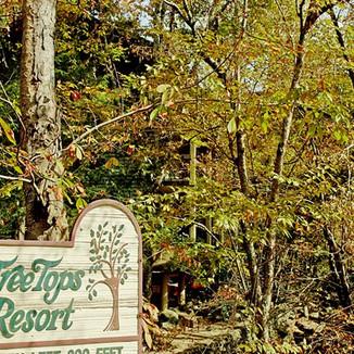 Tree Tops Resort