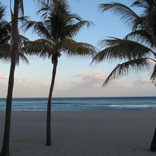 Enchanted Isle Resort
