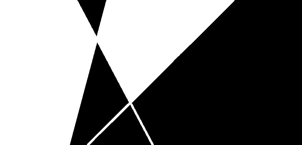 vlakken lubecore wit.png