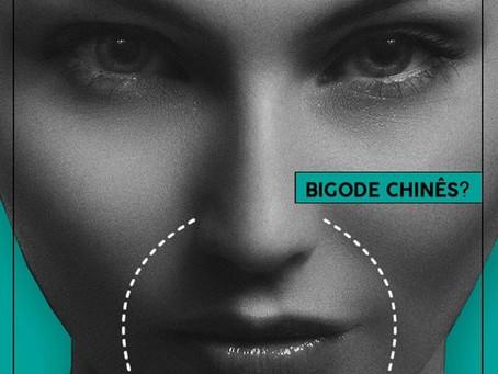 Saiba mais sobre o Bigode Chinês