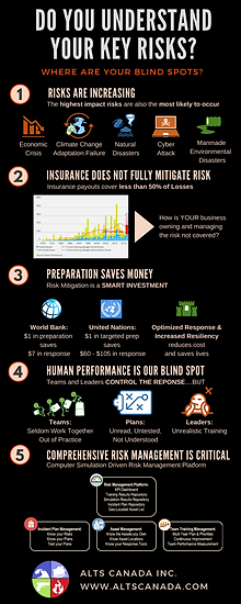 Corporate Risk Infographic.png