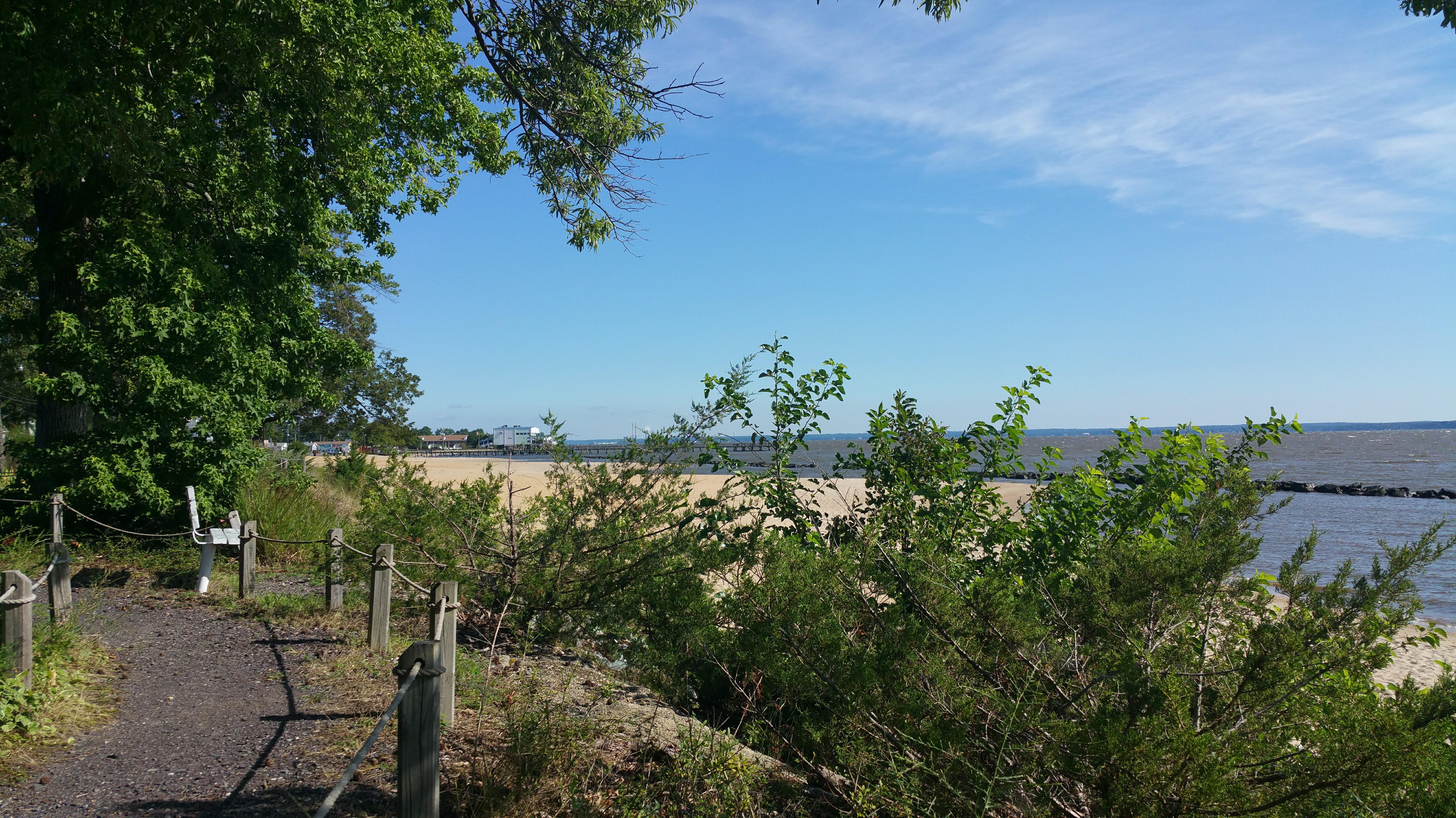 Walking Trails and Boardwalk