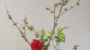 [2021年2月号] 図書館を飾る生け花