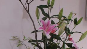 [2021年5月号] 玄関を飾る生け花