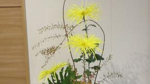 [2020年12月号] 生け花