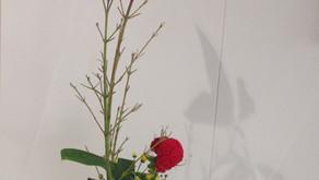 [2020年9月号] 菊池市中央図書館玄関を飾る生け花(2)