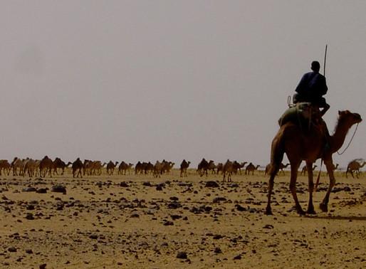 Dakhla: Más allá de la nada