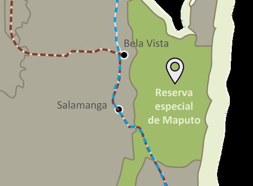 Ven a visitar la Reserva Especial do Maputo, área de conservación y santuario de fauna africana.