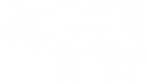 a1:a2 COW.png