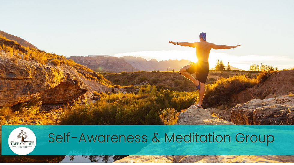 Self Awareness and Meditation group