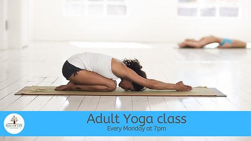 Weekly Adult Yoga Class