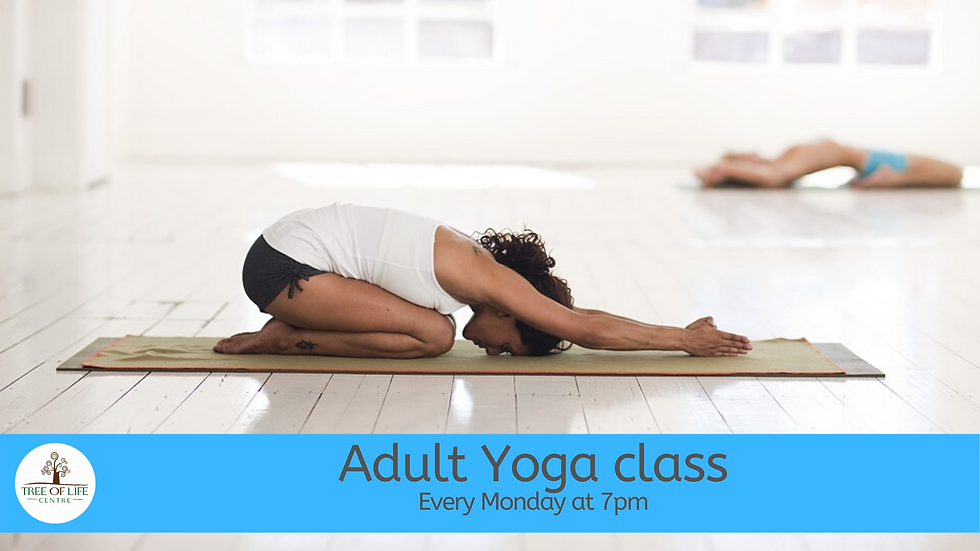 Weekly Adult Yoga Class