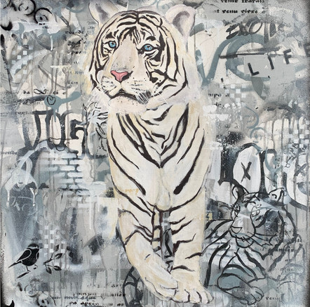 bleached tiger.