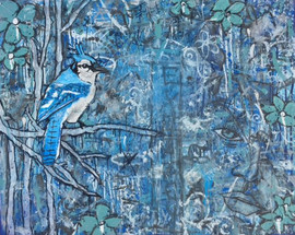 blue.(Blue Jay)