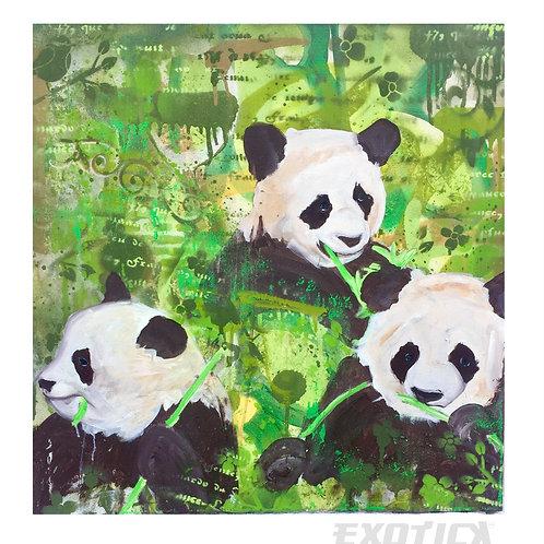 three pandas