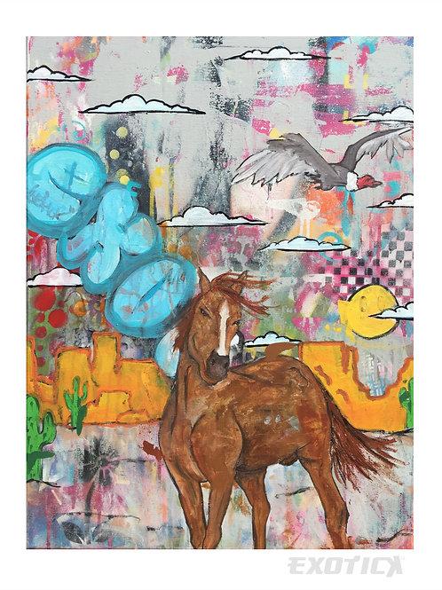 Wild Horse.