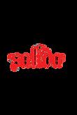 Saliva Logo.png
