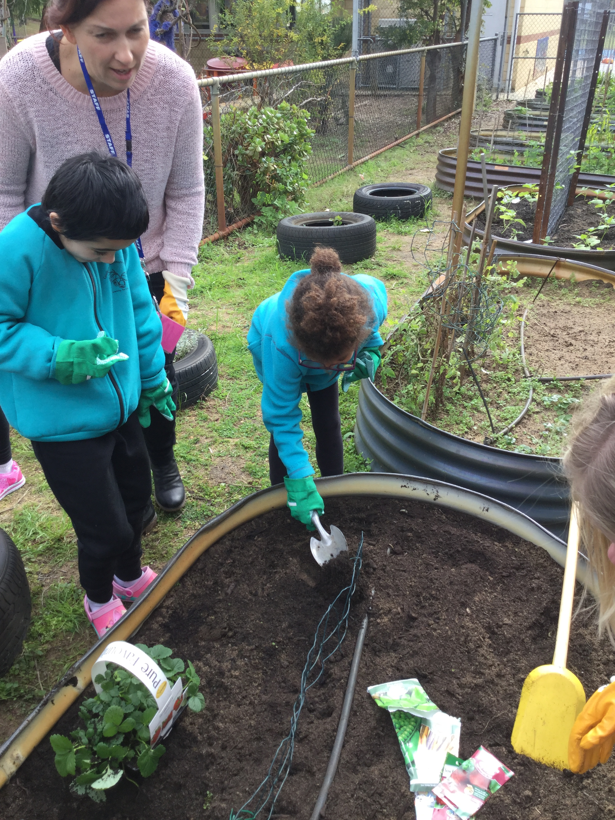 grace and mira planting