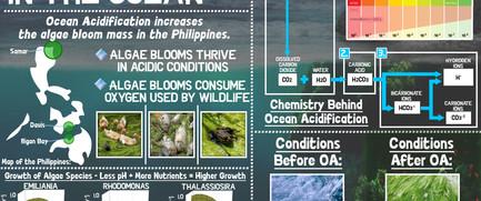 oa infographic v2.jpg