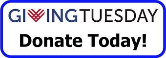 Giving Tuesday Donate today button.jpg