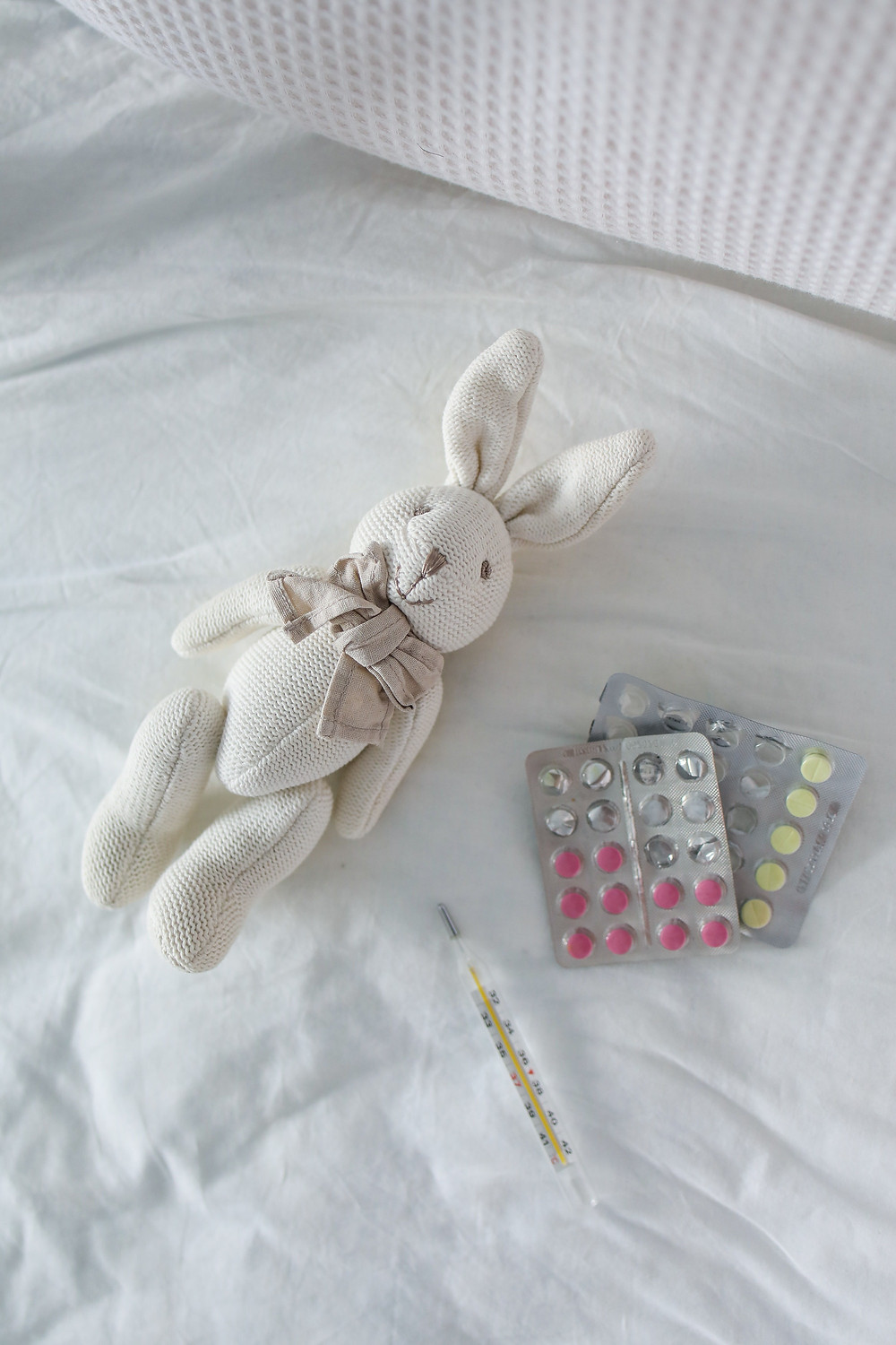 bunny with meds and themometer