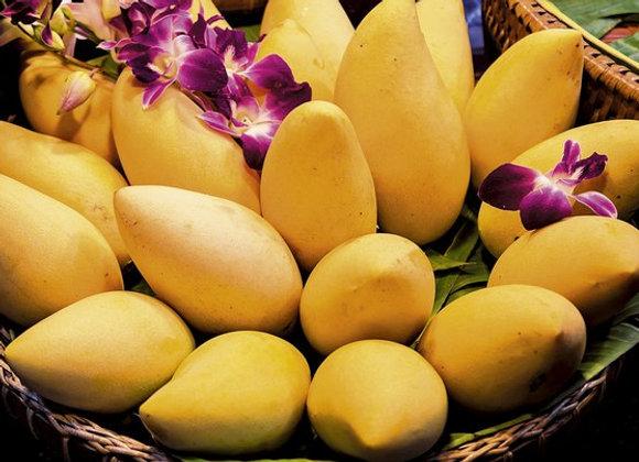 Манго Нам Док Май (желтое)