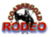 2017 Coarsegold Rodeo