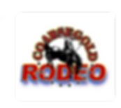 Annual Coarsegold Rodeo, Bull Riding, Barell Racing, Bucking broncos