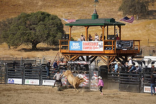 Coarsegold Rodeo Grounds