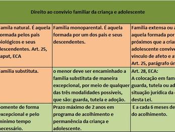 Direito ao convívio familiar da criança e adolescente e os tipos de famílias.