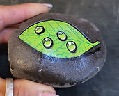 realistic leaf water droplets painted rock