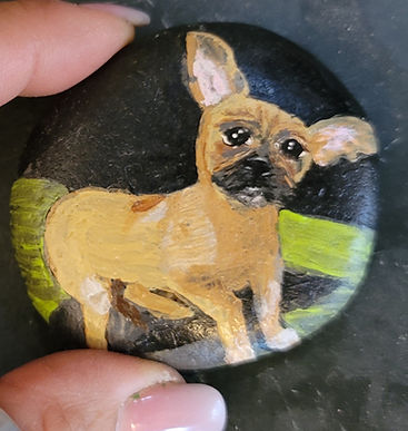 chihuahua puppy painted rock