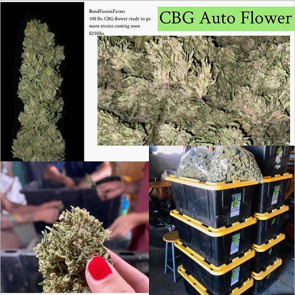 CBG Flower available.  Hemp Flower