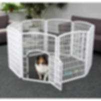 Iris playpen from Happy Cavaliers
