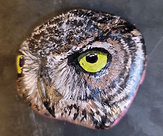 owl painted rock owl face realistic owl painting
