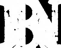 Bigbury News Logo white.png