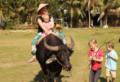 Water Buffalo ride in DaNang, Vietnam