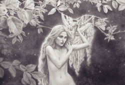 Wix-Banner-Nymph