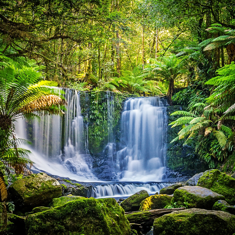 The Journeys Series - Shamanic Lands Sound Bath