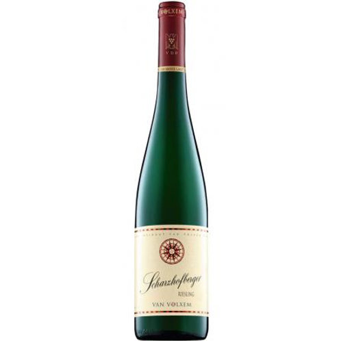 Riesling Scharzhofberger GG