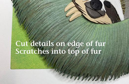 cut details in sloth fur.jpg