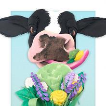 farm fresh ice cream.jpg