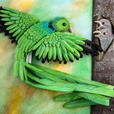 quetzal 2020.jpg