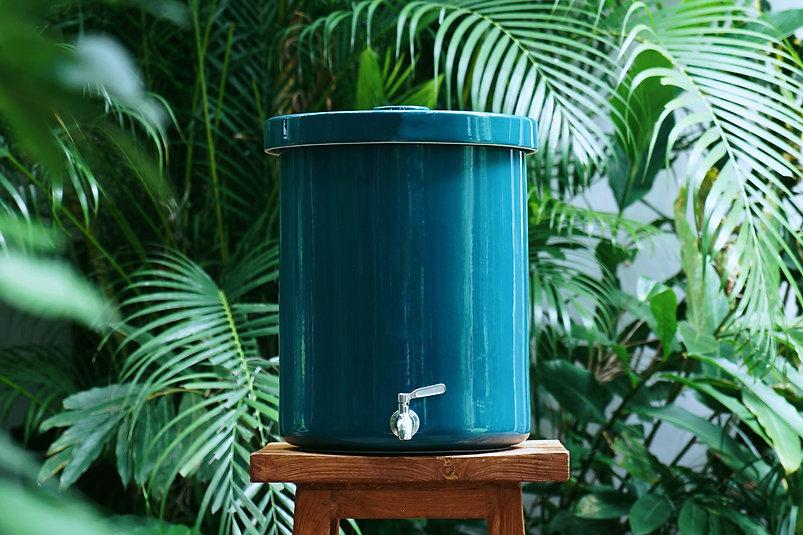 Blue Tropical 1aa.jpg