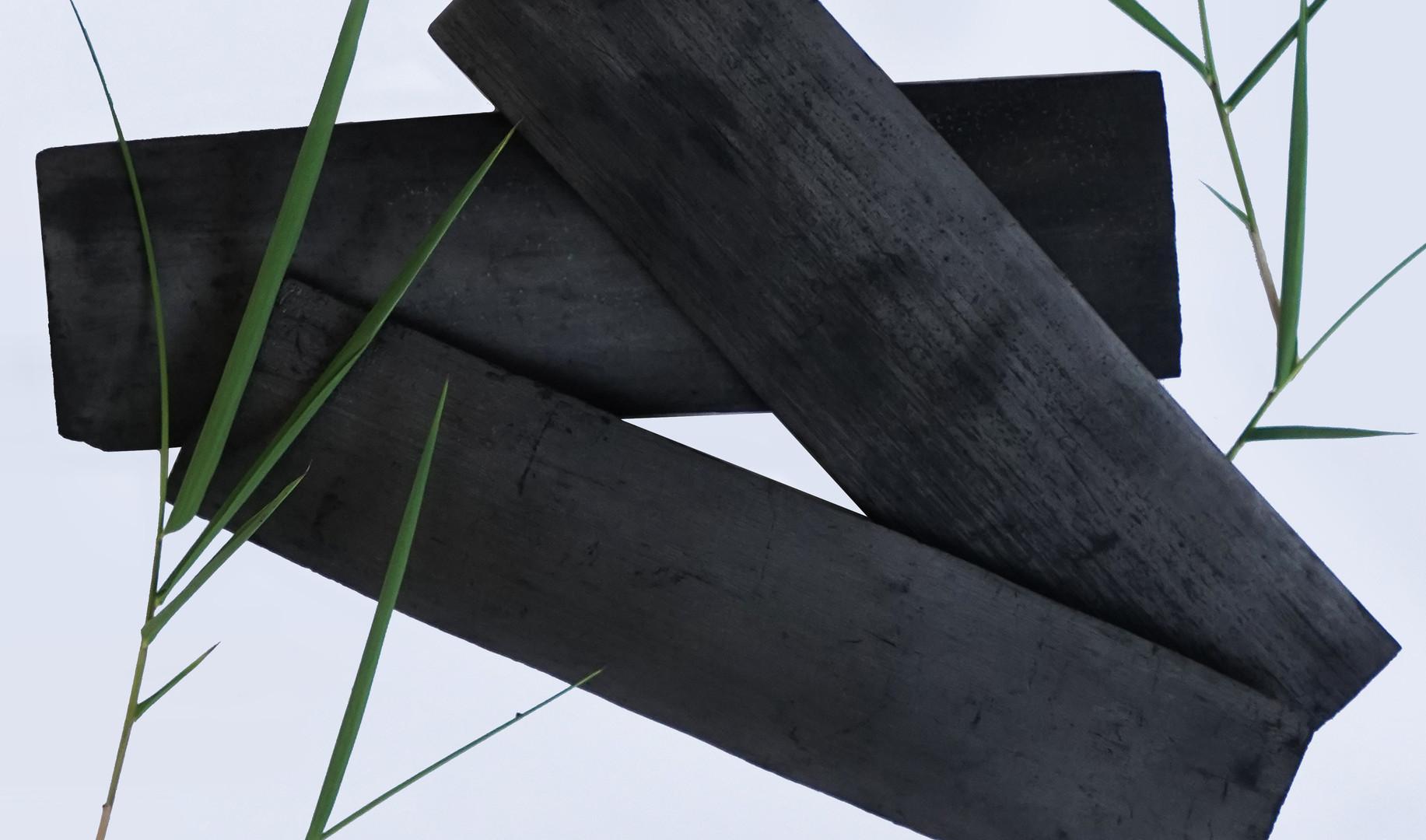 Bamboo Carcoal