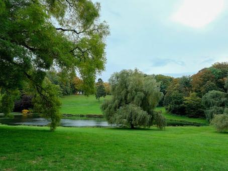 Eindelijk permanente sorteereilanden op komst in parken en bossen van het Brussels Gewest
