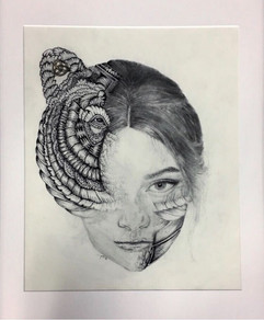 Artwork by Julia Habashy
