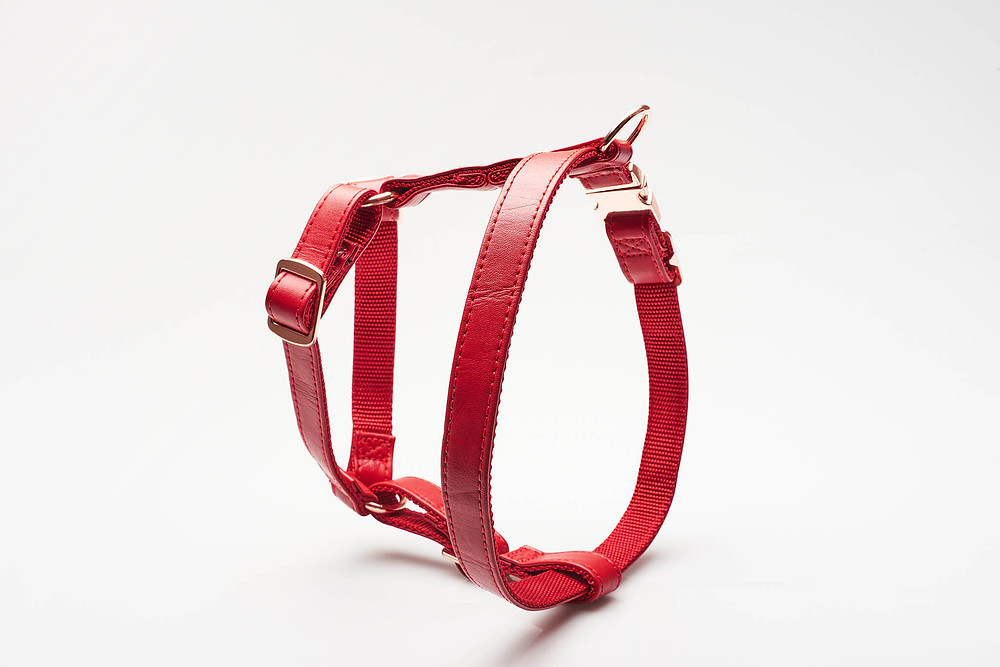 An example of ghost product photography with shadows and a hard light source on a dog harness.